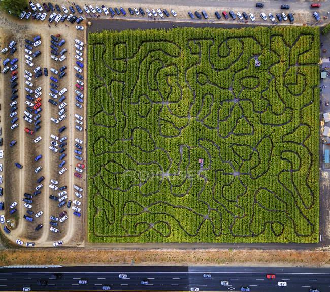 Vista aérea do labirinto de milho — Fotografia de Stock