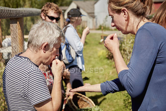 People tasting seeds and plants — Stock Photo