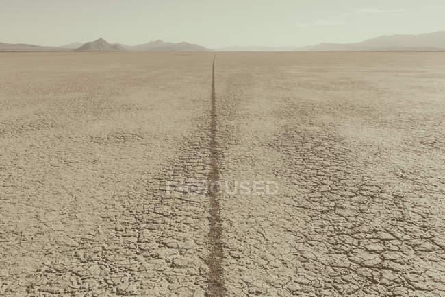 Traccia di pneumatico singolo su playa — Foto stock