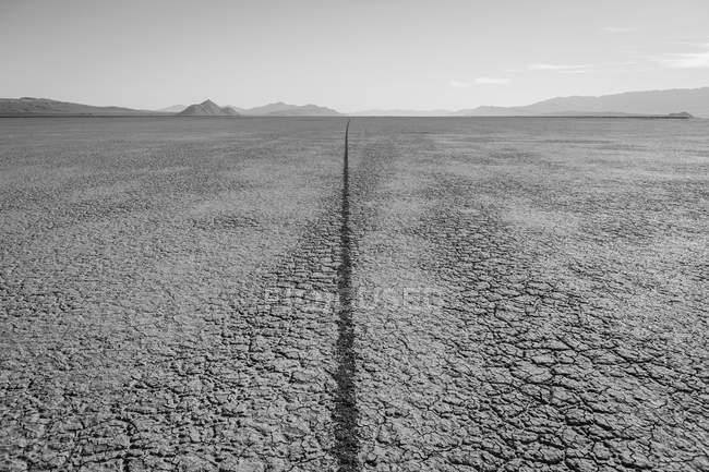 Single tire track on playa — Stock Photo