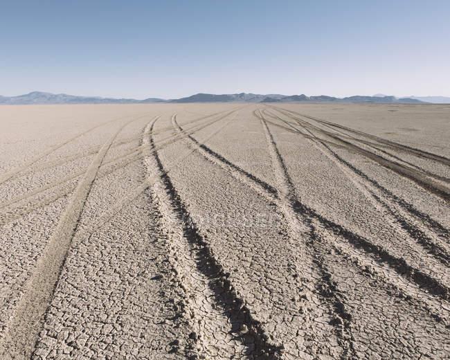 Marcas de pneu na praia — Fotografia de Stock