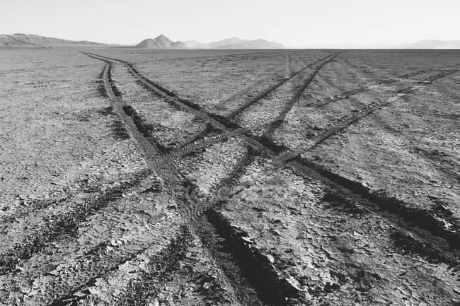 Faixas de pneus na playa — Fotografia de Stock