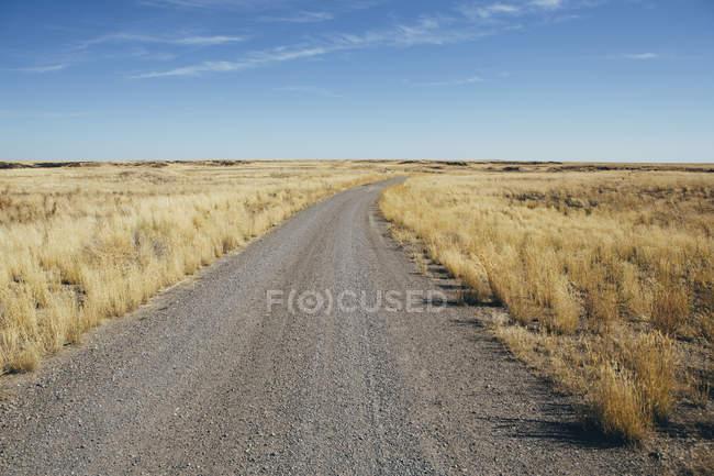 Chemin de terre à travers les terres rurales — Photo de stock