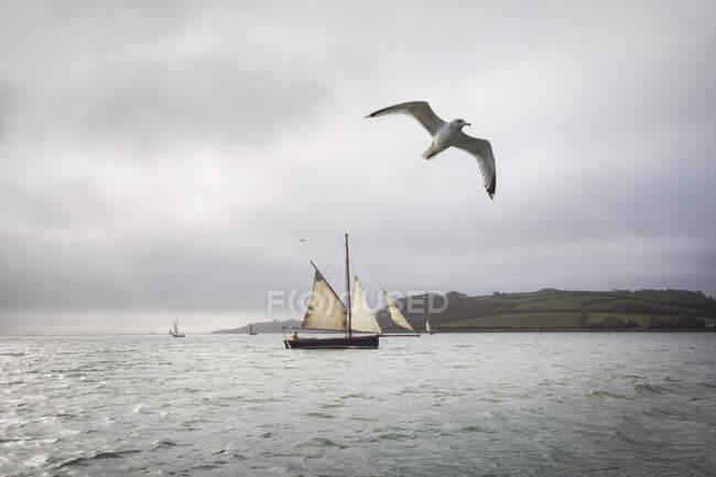 Traditional sailing boat — Stock Photo