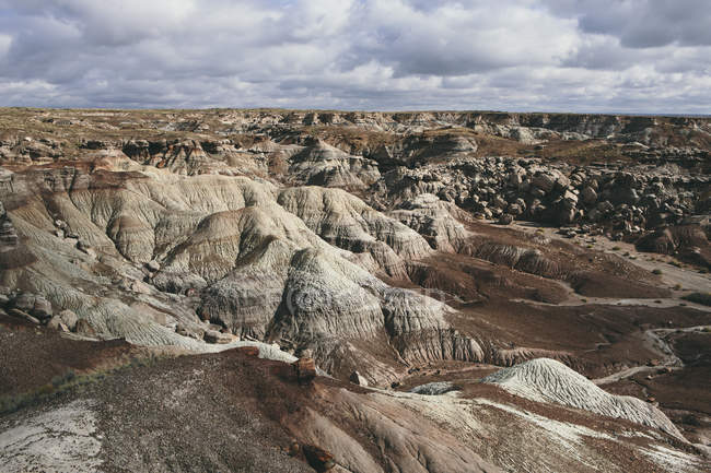 Formazioni rocciose del deserto verniciato — Foto stock
