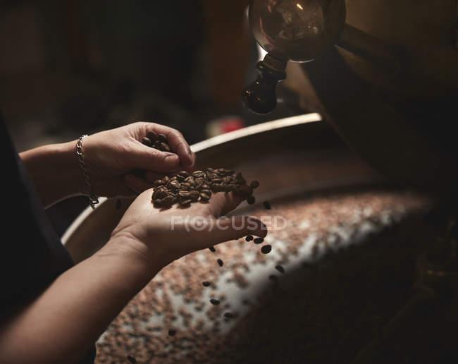 Persona sosteniendo puñado de granos de café - foto de stock