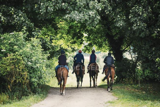 Cavaleiros em cavalos andando ao longo do caminho — Fotografia de Stock