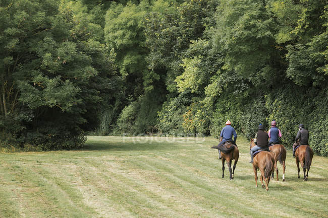 Riders on thoroughbred horses riding along path — Stock Photo