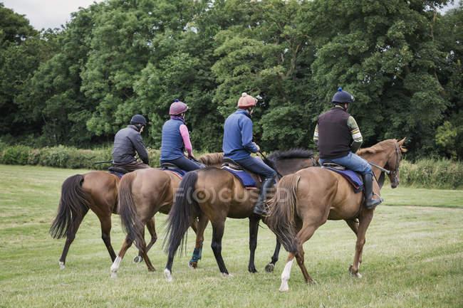 Всадники на чистокровных лошадях — стоковое фото