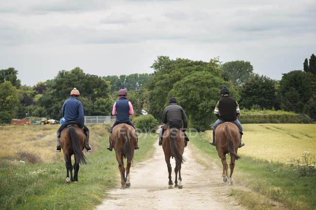 Cavaleiros em cavalos puro-sangue andando ao longo do caminho — Fotografia de Stock