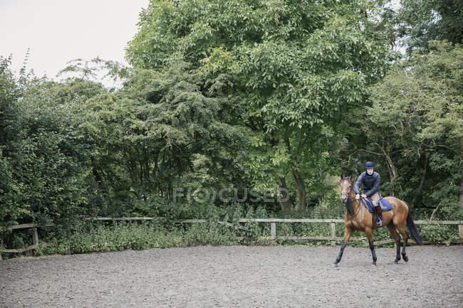 Homem montando cavalo em paddock — Fotografia de Stock