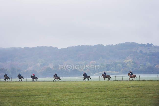 Cavaleiros e cavalos em galope movendo-se ao longo do caminho — Fotografia de Stock