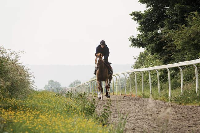Женщина верхом на лошади по шлаковому пути — стоковое фото
