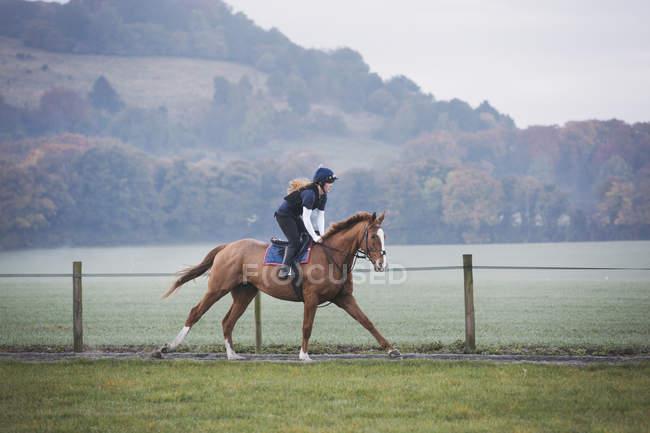 Woman on horse riding along path — Stock Photo