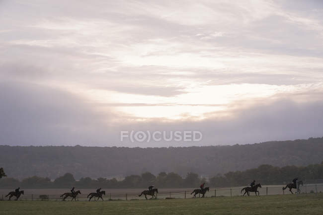 People on horses riding across field — Stock Photo