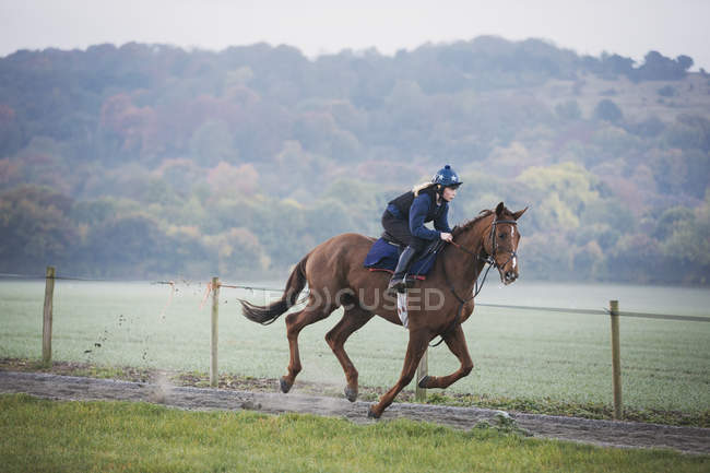 Woman galloping on racehorse — Stock Photo