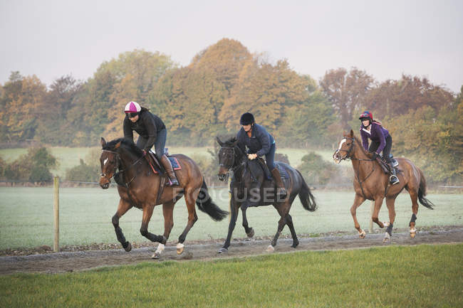 Три всадника и лошади скачут — стоковое фото