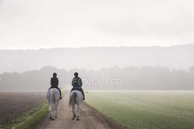 Riders on horses riding along path — Stock Photo