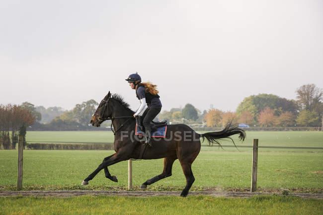 Woman riding bay horse — Stock Photo