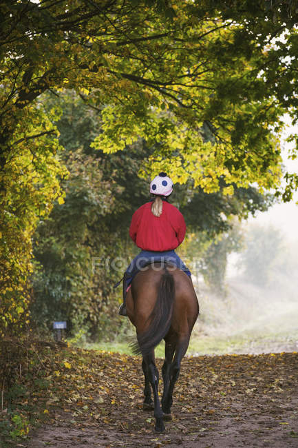 Rear view of woman riding horse — Stock Photo