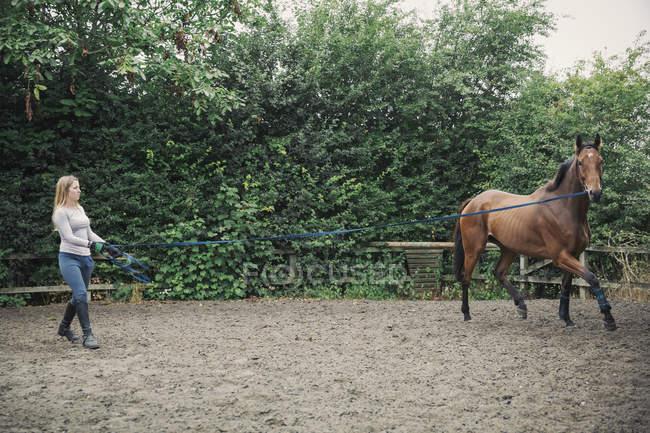 Mulher exercitando cavalo em paddock — Fotografia de Stock