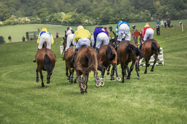 Horse Racing Stock Photos Royalty Free Images Focused