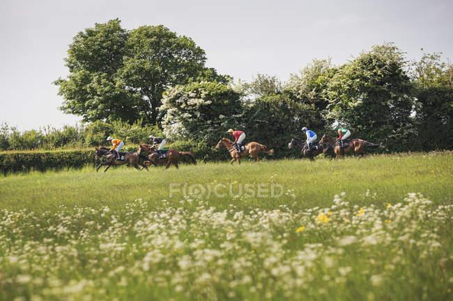 Grupo de jinetes en caballos de carreras - foto de stock