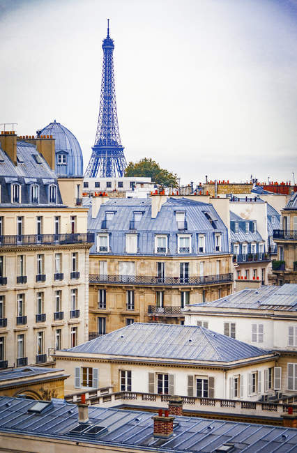 Rooftops of historic buildings in Paris — Stock Photo