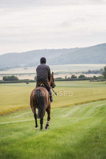 Человек верхом на лошади — стоковое фото