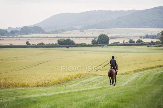 Man riding horse across field — Stock Photo