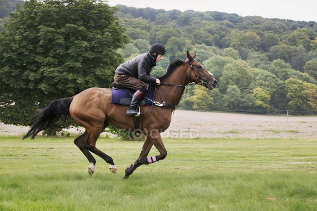 Man on horse galloping across grass. — Stock Photo
