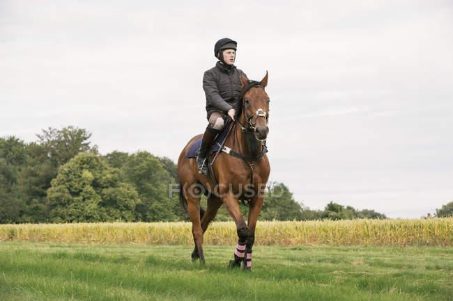 Man riding thoroughbred horse — Stock Photo