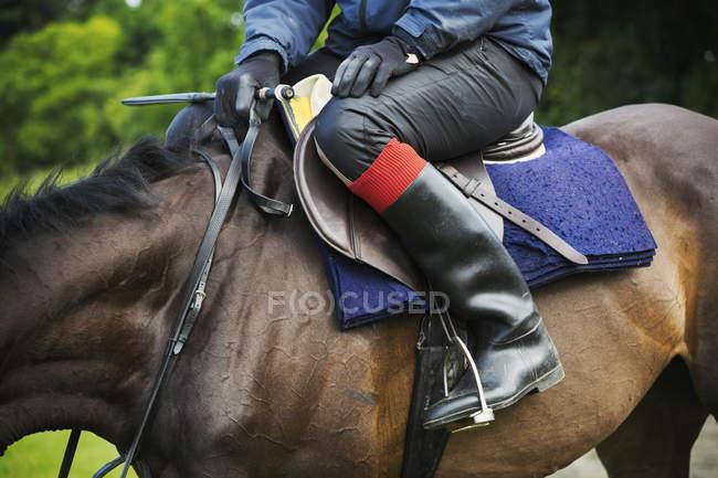 Rider sitting on bay horse — Stock Photo