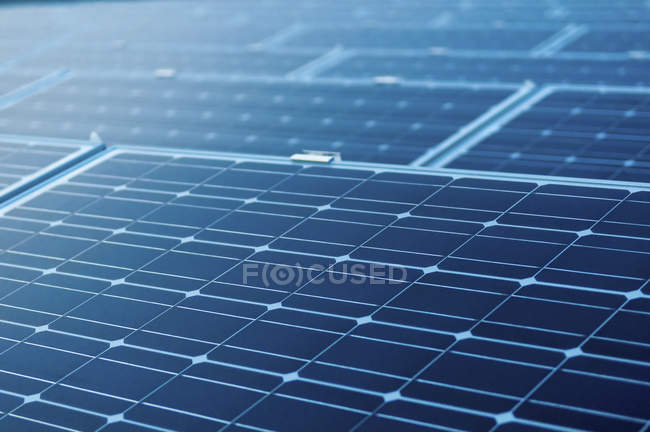 Солнечные панели в сетке — стоковое фото