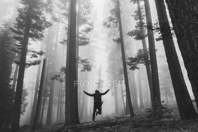 Mann springt im nebligen Wald — Stockfoto