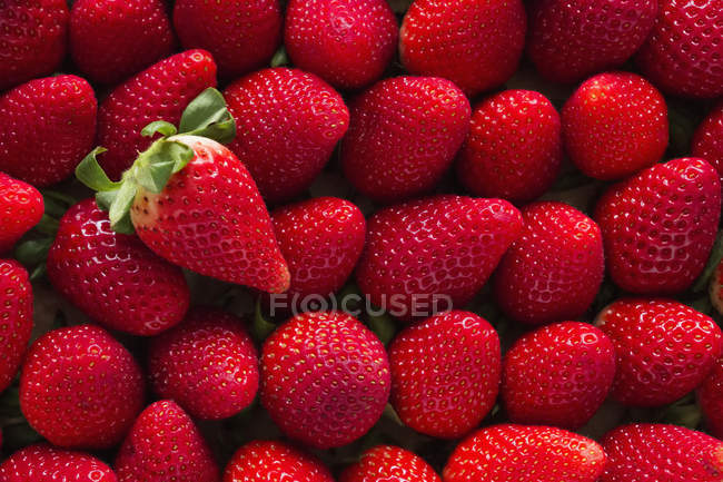 Strawberries arranged upside down — Stock Photo