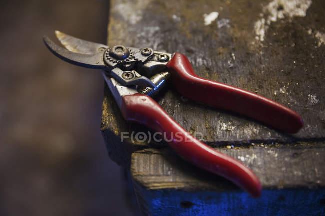 Pair of cutting shears — Stock Photo