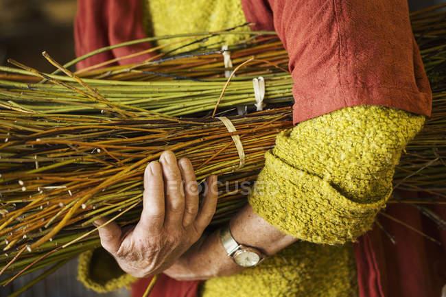 Mulher segurando feixe de salgueiro — Fotografia de Stock