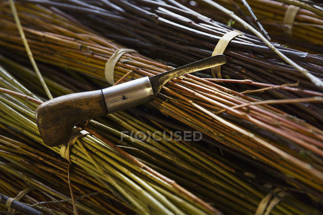 Willow bundles and hand tool — Stock Photo