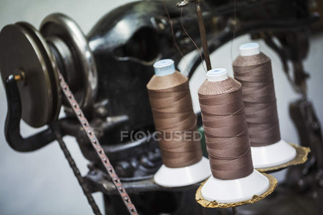 Indistrual leather sewing machine — Stock Photo