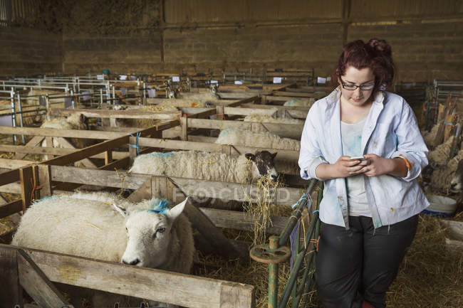 Woman standing next to sheep pen — Stock Photo