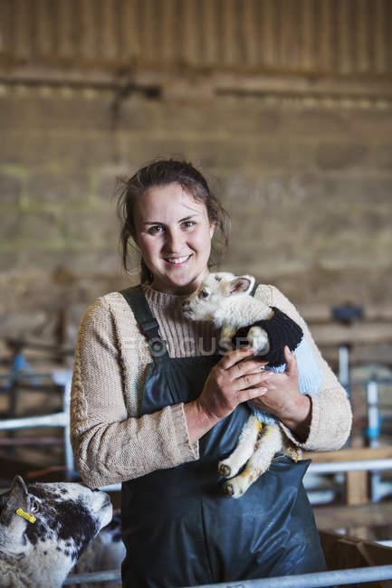 Cordeiro recém-nascido de exploração de mulher — Fotografia de Stock