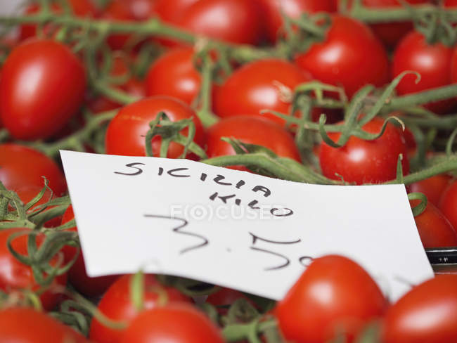 Tomatoes on vine, and price — Stock Photo