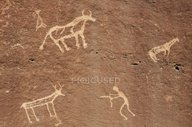 Native American petroglyphs — Stock Photo