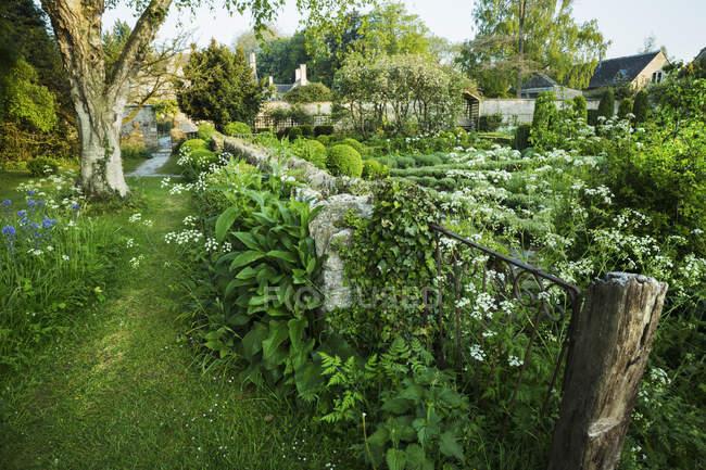 Vista jardim com cerca — Fotografia de Stock