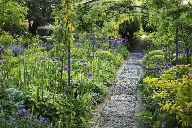 View along a garden path — Stock Photo