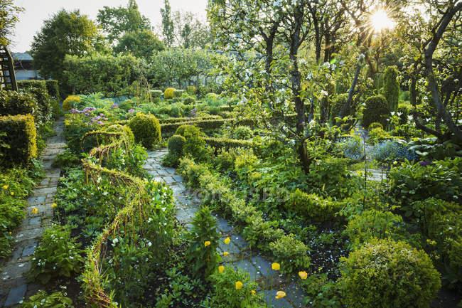 Vista jardim com caminho de pedra — Fotografia de Stock