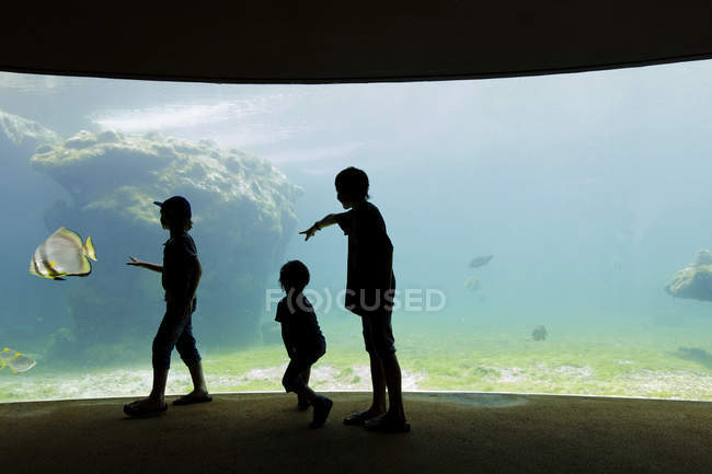 Children standing in an aquarium by a glass wall — Stock Photo