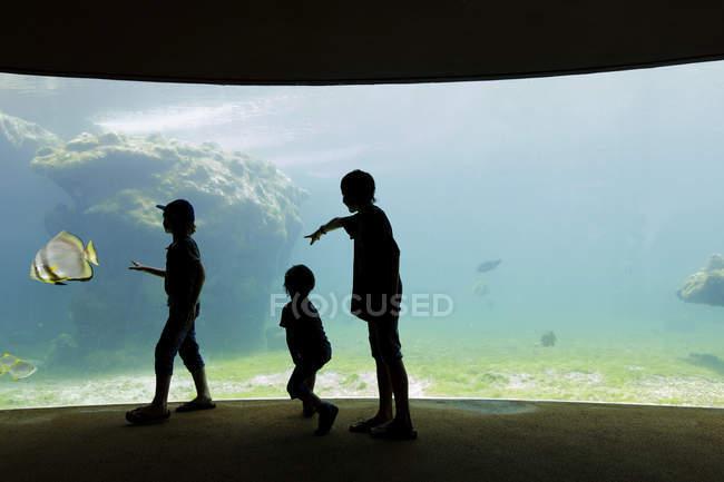 Kinder stehen in einem Aquarium durch eine Glaswand — Stockfoto