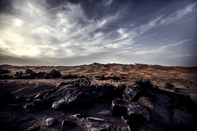 Desert landscape with sand dunes — Stock Photo